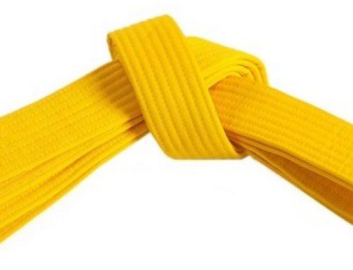 Lean Yellow Belt